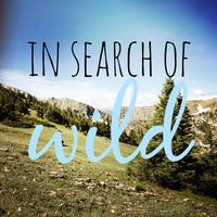 insearchofwild