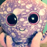 squidles20