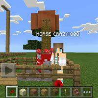 horsecraycray808