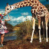 giraff3lov3r